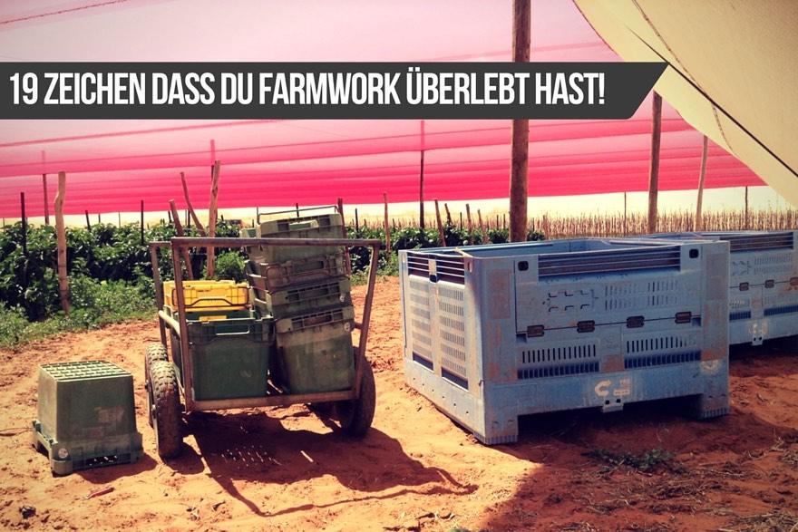 Farmwork-ueberlebt