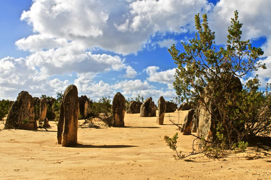 Narbung Nationalpark